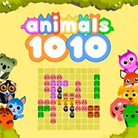 10×10 Animals